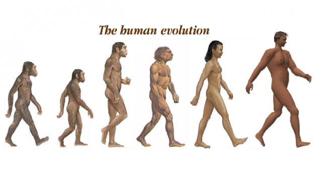 Evoluzione umana, il primo Homo Sapiens europeo era pugliese